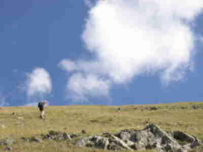 Lisa, ascending the grassy knoll