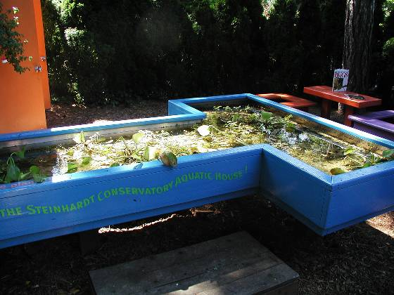 Discovery Garden aquatic plant station