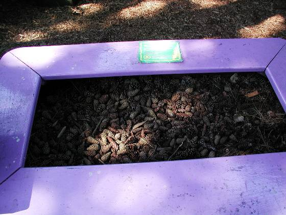 Discovery Garden Sensory Station (various types of pine cones)