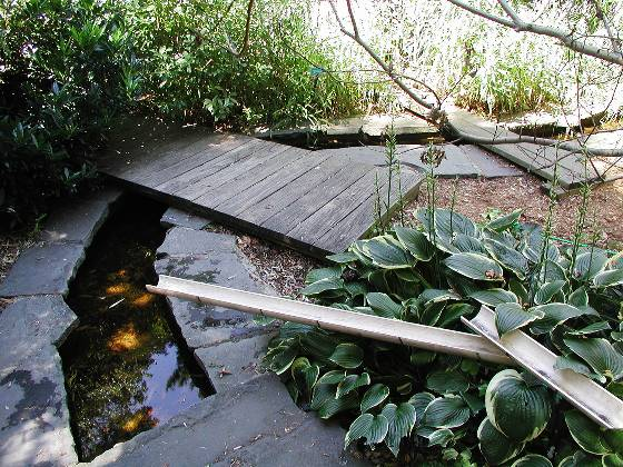 "End of Bamboo Water Garden-it spilled into short ""river"""