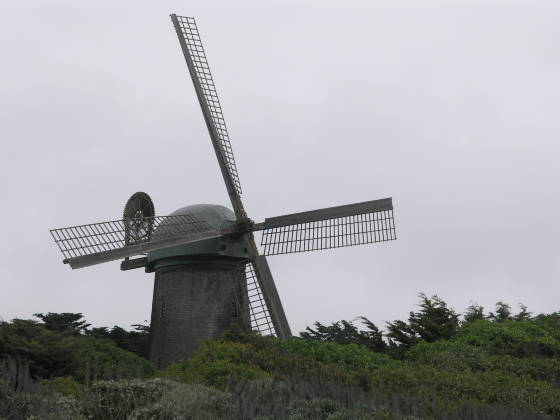 The Dutch Windmill in Golden Gate Park