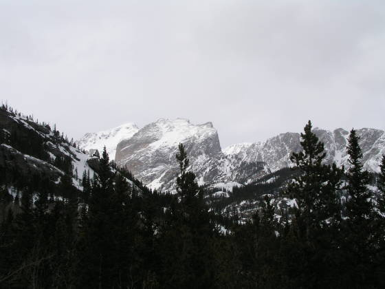 Looking westward towards Hallet Peak