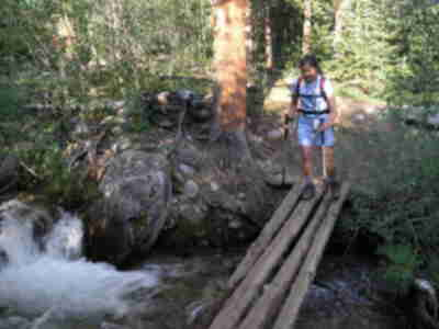 Shari, crossing a log bridge (her favorite thing to do)
