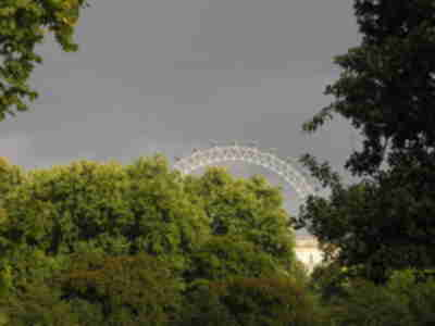 The London Eye, visible in St. James's Park