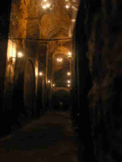 Another wine cellar in Montepulciano
