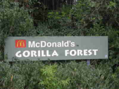 These gorillas are brought to you by McDonald's