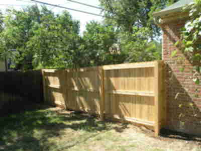 The new fence, unstained