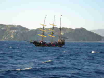 The Pirate ship also following the whales