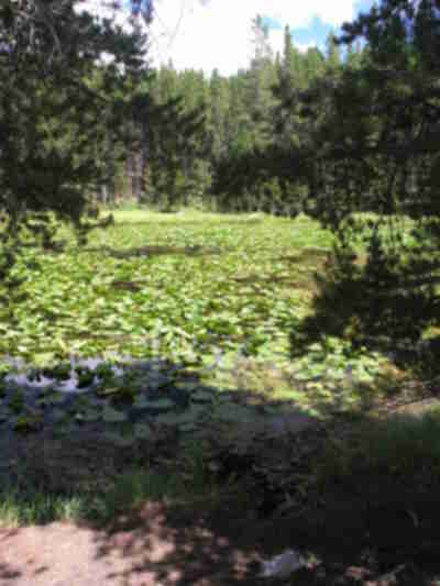 A small lake next to Lily Pad Lake, at the top of Wildernest