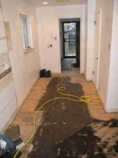 Linoleum removed, tar still being sanded off