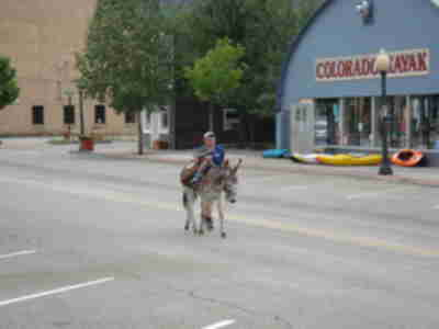 The last finisher of the Gold Rush Days Burro Race in Buena Vista