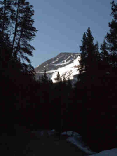 Mt. Guyot, from the trailhead