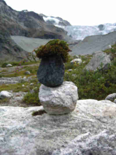 A cairn with a toupee?