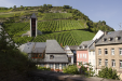 Steep vineyards