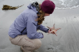 Lisa plays with a starfish