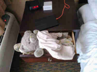 Amy decides that all of her animals need to sleep in the nightstand drawer